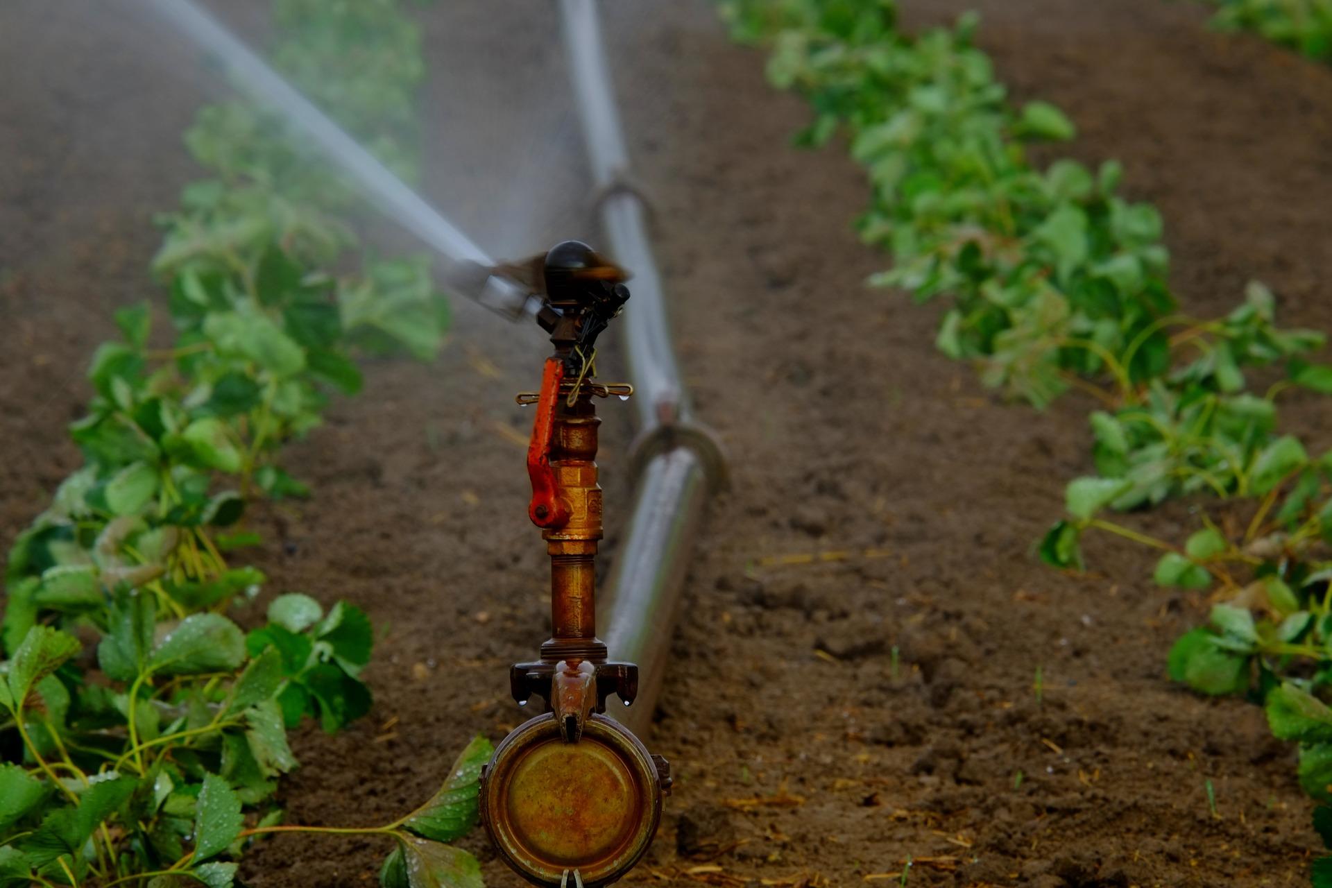 Pixabay – Irrigation II