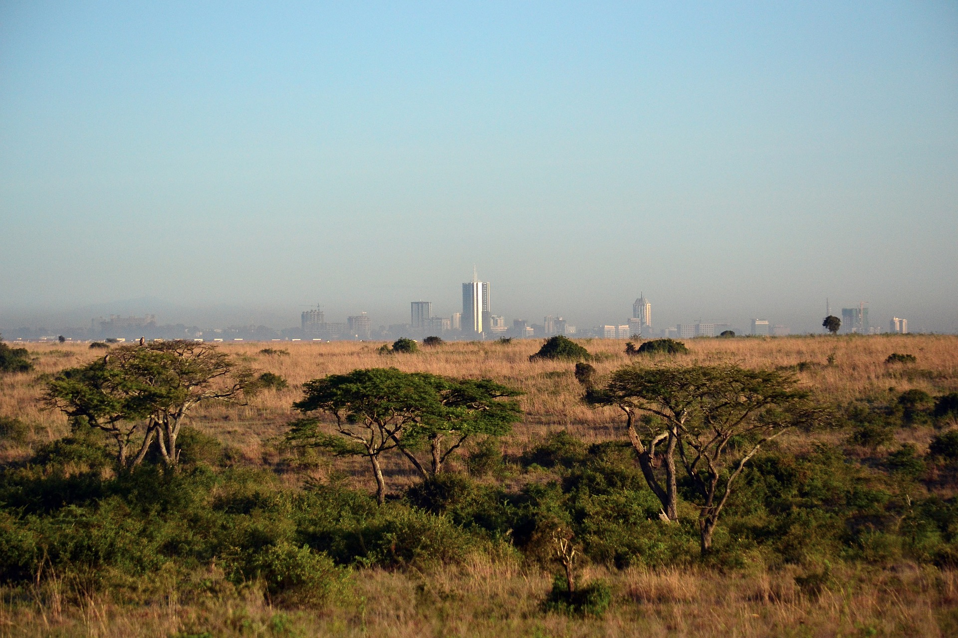 Pixabay – Nairobi